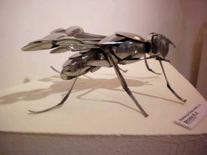 """Spoonfly "" Donald Giaranella"