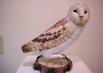 """"""" Barn Owl""""    Julia Cizeski"""